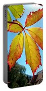 Leaves In Sunlight 4 Portable Battery Charger