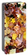 Leaves Of Fall Portable Battery Charger