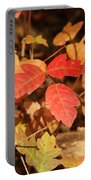 Leaves Of Three Portable Battery Charger