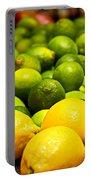 Lemons And Limes Portable Battery Charger