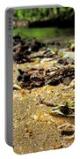 Leopard Frog Landing Portable Battery Charger