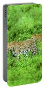 Leopard On The Move Portable Battery Charger