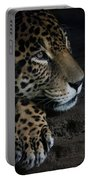Leopard Print Portable Battery Charger