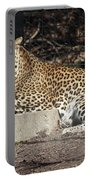 Leopard Relaxing Portable Battery Charger