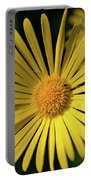 Leopard's Bane    Portable Battery Charger