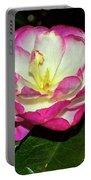 Leslie Ann - Sasanqua Camellia 006 Portable Battery Charger