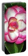 Leslie Ann - Sasanqua Camellia 007 Portable Battery Charger