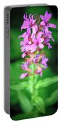 Lesser Purple Fringed Orchid Portable Battery Charger
