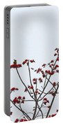 Lesser Yellownape Woodpecker Portable Battery Charger