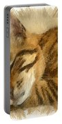 Let Sleeping Cats Lie Portable Battery Charger