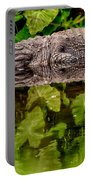 Let Sleeping Gators Lie Portable Battery Charger