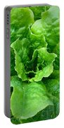 Lettuce Portable Battery Charger