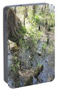 Lettuce Lake Swampland Portable Battery Charger