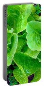 Lettuces Portable Battery Charger