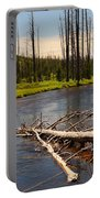 Lewis River Portable Battery Charger