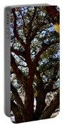 Liberty Oak Harbour Town Hilton Head Sc Portable Battery Charger by Lisa Wooten