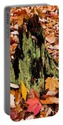Lichen Castle In Autumn Leaves Portable Battery Charger