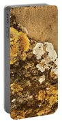 Lichen On The Piran Walls Portable Battery Charger