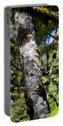 Lichen To Moss Portable Battery Charger