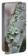 Lichens 2 Portable Battery Charger