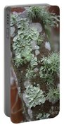 Lichens 4 Portable Battery Charger