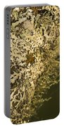 Lichens In Oregon Portable Battery Charger