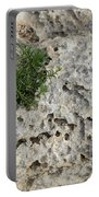 Life On Bare Rock - Pockmarked Limestone And Thyme Portable Battery Charger