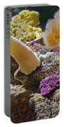 Life Under The Sea In Monterey Aquarium-california Portable Battery Charger