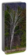 Life's A Birch No.1 Portable Battery Charger
