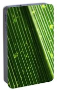 Light Shining Through Palm Frond Portable Battery Charger