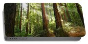 Light The Way - Redwood Forest Of Muir Woods National Monument With Sun Beam. Portable Battery Charger