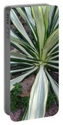 Agave Fourcroydes Portable Battery Charger