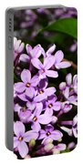 Lilac Bush In Spring Portable Battery Charger