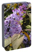 Lilacs II Portable Battery Charger