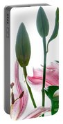 Pink Oriental Starfire Lilies Portable Battery Charger