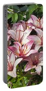 Lilies In Pink Portable Battery Charger