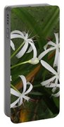 Lilies Of The Swamp Portable Battery Charger