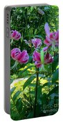 Lilly Love Portable Battery Charger