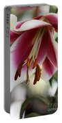 Lily Beauty Portable Battery Charger