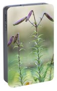 Lily Buds Portable Battery Charger
