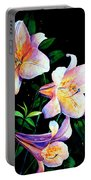 Lily Fiesta Portable Battery Charger