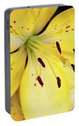 Lily Macro Portable Battery Charger