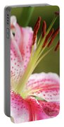 Lily One Portable Battery Charger