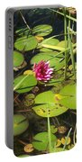 Lily Pad Pond In High Noon Sun Portable Battery Charger
