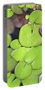 Lily Pads #1 Portable Battery Charger