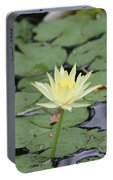 Lily Pads Portable Battery Charger