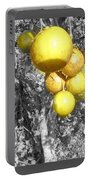 Lime Tree Portable Battery Charger