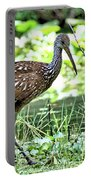Limpkin 2 Portable Battery Charger