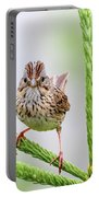 Lincoln's Sparrow Portable Battery Charger