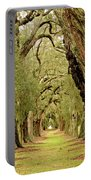 Line Of Oak Trees To Distance Portable Battery Charger